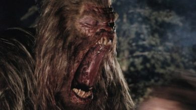Photo of 'Sasquatch': Hulu develops documentary on Bigfoot
