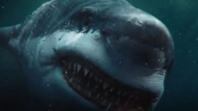 "Photo of Killer Shark Attacks in Chinese Horror Trailer ""Death Shark"";  Check it out!"