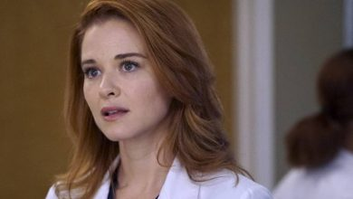Photo of 'Grey's Anatomy': Sarah Drew returns in the official 17th season image