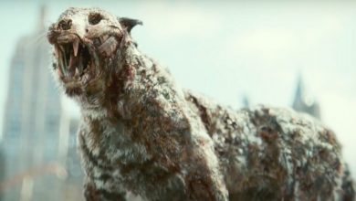Photo of 'Army of the Dead': Zack Snyder explains why a 'Zombie Tiger' makes perfect sense for the movie