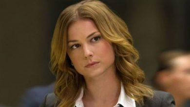 Photo of 'Falcon and the Winter Soldier': Emily VanCamp reveals her favorite MCU superheroes