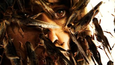 Photo of Revision |  The Cloud – Netflix casts interesting terror over deadly locusts